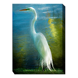 Canvas Wall Art Poised Heron