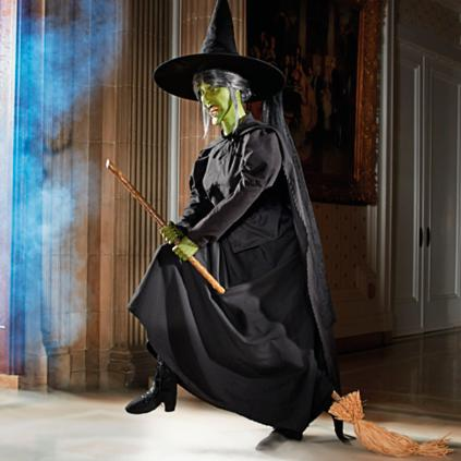 Animated Wicked Witch Of The West On Broom Grandin Road