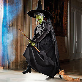 Animated Wicked Witch of the West on Broom