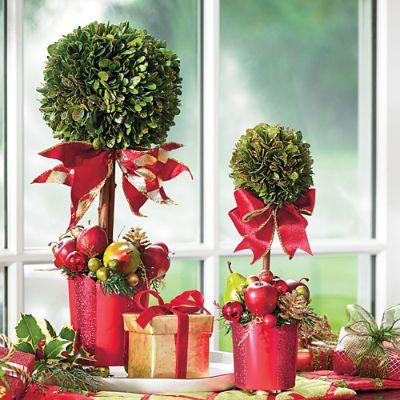 Hailey Boxwood Topiary Grandin Road