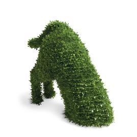 Faux Boxwood Garden Dog, Digger