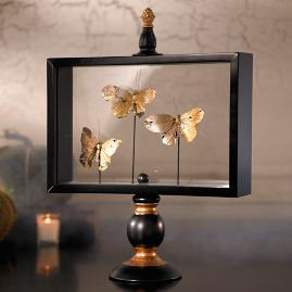 Butterfly Large Glass Display