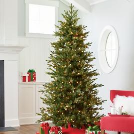 Mountain Pine Pencil Christmas Tree Grandin Road