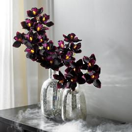 Dark Orchids Stems, Set of Three
