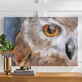 One Eye Night Owl Wall Art