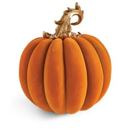 Ornate Velvet Pumpkin