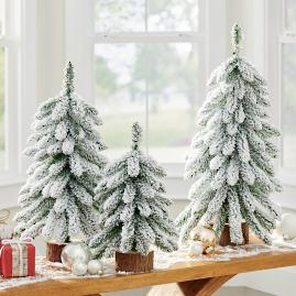 Snowy Trees, Set of Three