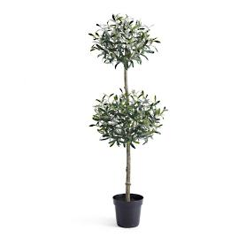 Olive Double Ball Tree