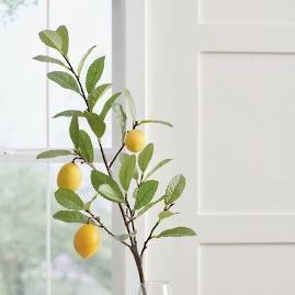 Lemon Branch, Set of Three