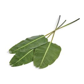 Banana Leaf Stem, Set of Three