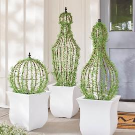 Caged Topiaries