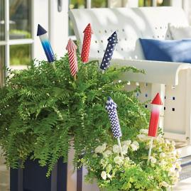 Firework Plant Stakes, Set of Six