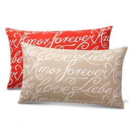 Decorator Indoor Throw Pillows