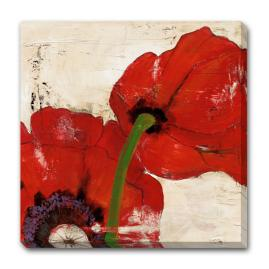 Antique Poppies Wall Art II