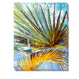 Blackbeard's Palm Outdoor Wall Art