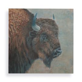 Buffalo Bruce Wall Art