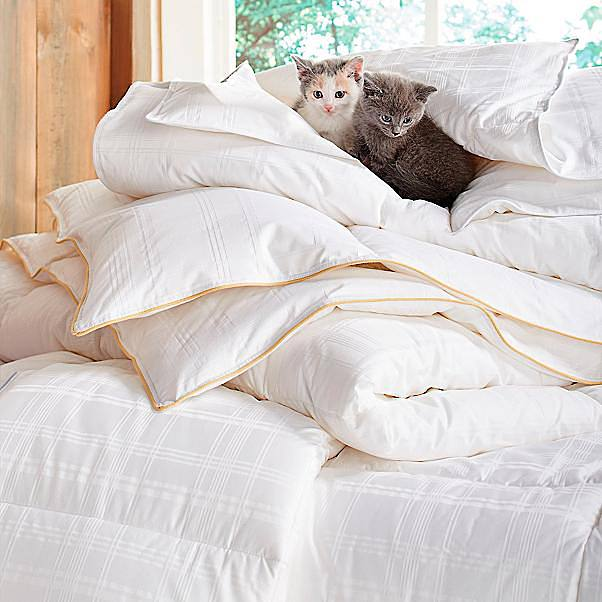 Or In A He Sleeps Hot I Sleep Cold Arrangement That Means You Re Getting Fitful Go European Use Two Twin Duvet Inserts Covers Side