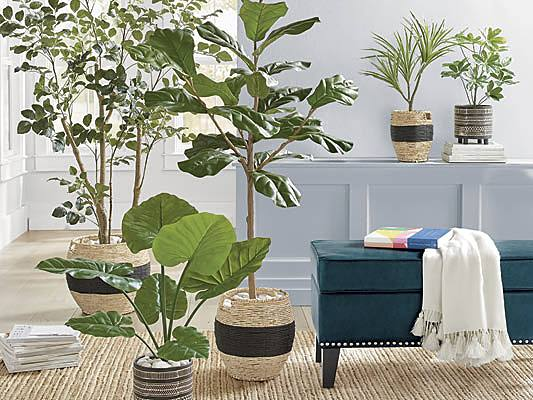 How to Use Artificial Plants Indoors - Grandin Road Blog